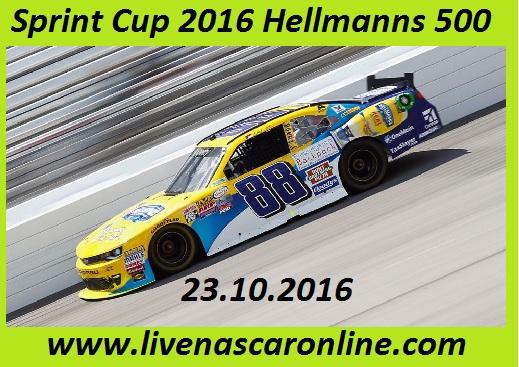 Sprint Cup 2016 Hellmanns 500